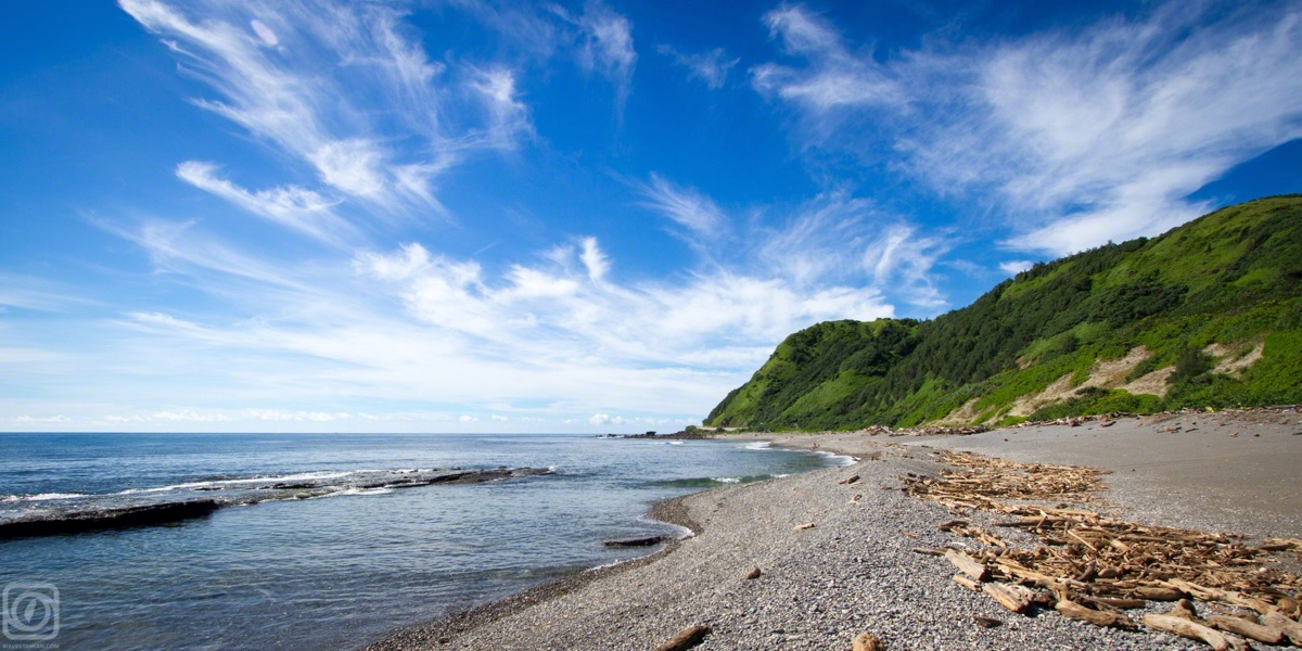 Green cliffs with driftwood on the beach | Surf Travel Taiwan